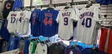 Official Cubs jerseys at Dino's Sports Fan Shop in Glenview